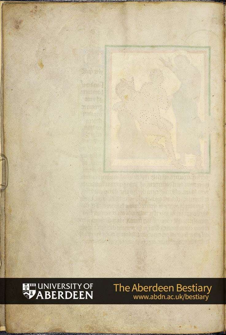 Folio 3v - blank page  | The Aberdeen Bestiary | The University of Aberdeen