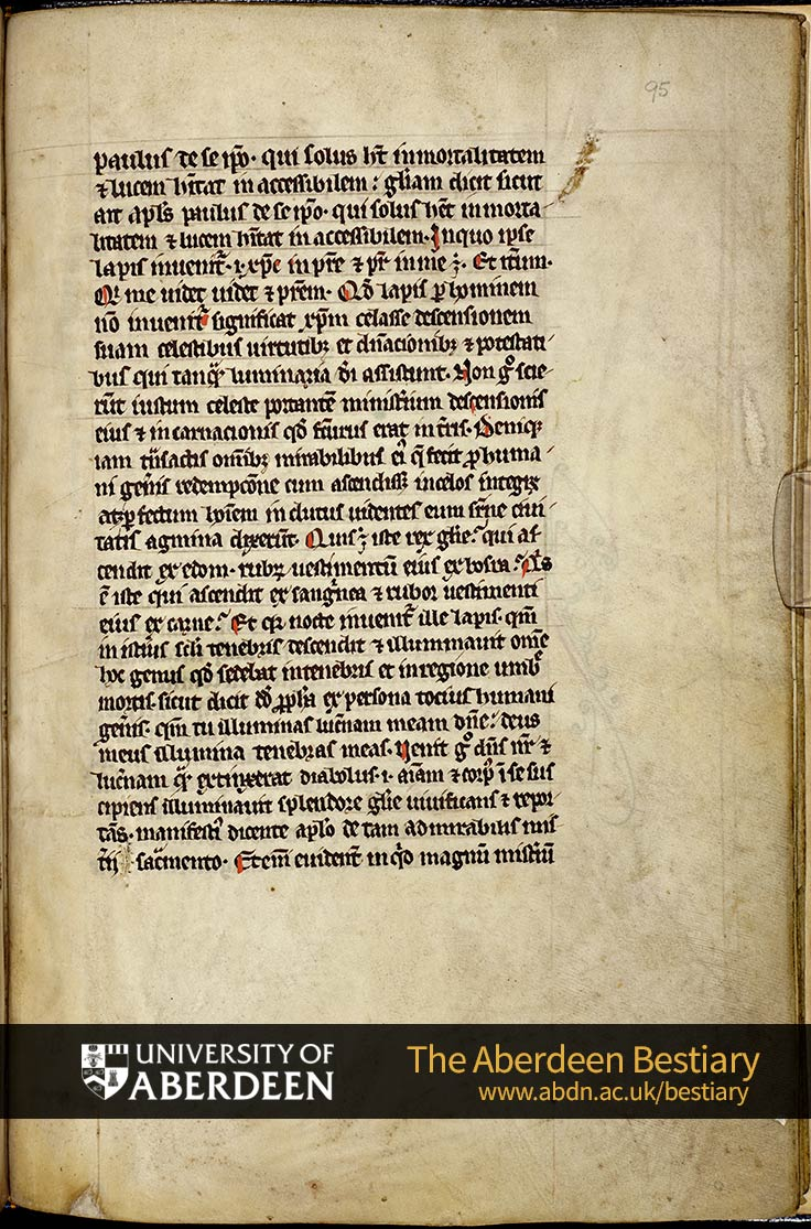 Folio 95r - the adamas stone, continued. | The Aberdeen Bestiary | The University of Aberdeen