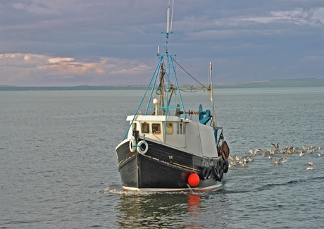 Still time for Scottish fishing industry to adapt to climate change