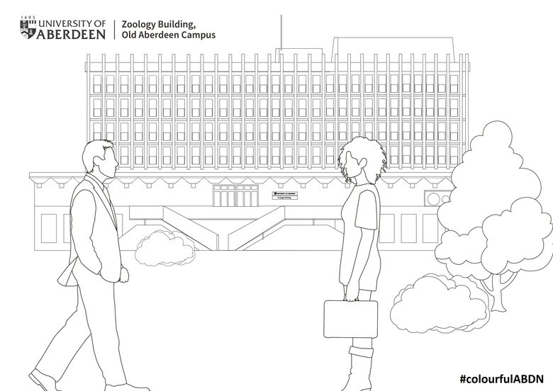 Zoology Building Colouring in Template