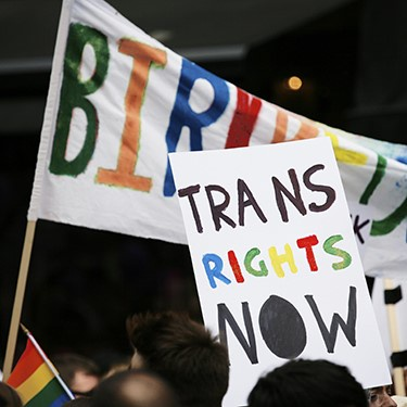 Trans Rights Now Sign