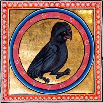 Owl Bestiary