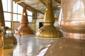 A dram good idea - research to tackle effects of climate change on Scotch whisky
