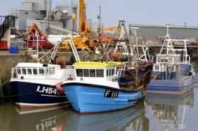 New funding to explore the impact of Brexit on UK fisheries policy