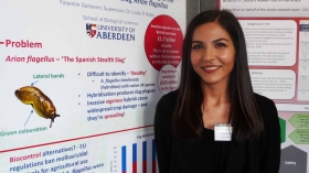 Yasemin Gulseven presented her research at the UK Houses of Parliament