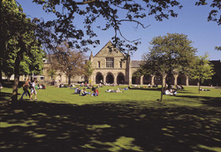 King's College lawn