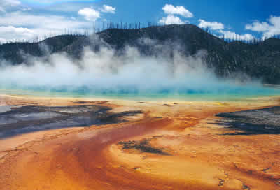 Orange bacterial growth on sinter outwash area of Grand Prismatic spring, Yellowstone National Park, USA