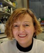 Professor Anne Donaldson