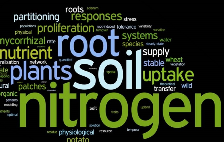 research papers plant ecology
