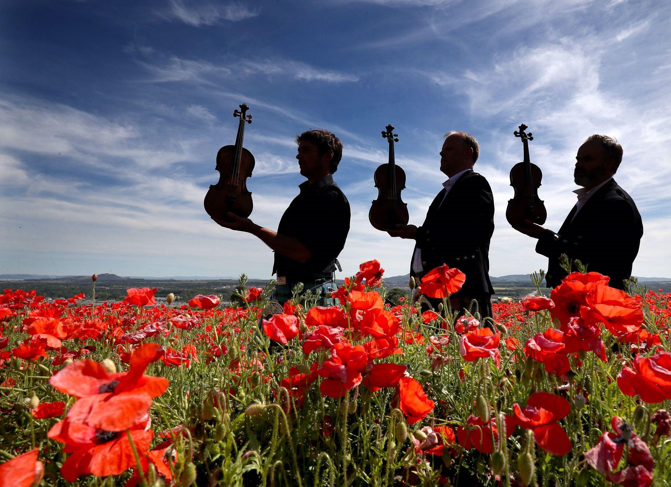 Three musicians in a poppy field